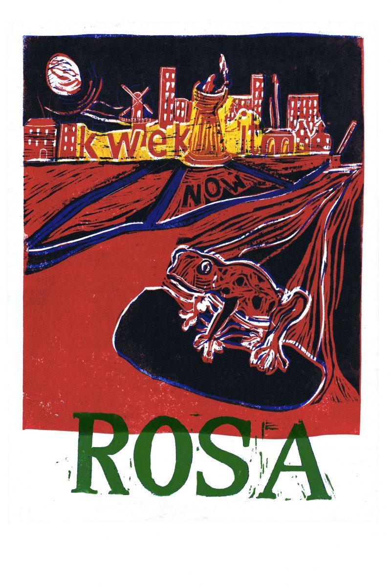 FEEST: Kick-off verkiezingscampagne ROSA