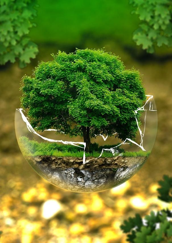 Earth Day Pubquiz